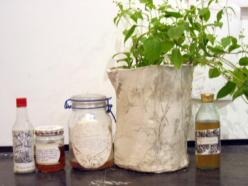 jars of mead, absinthe and wormwood tincture; handmade ceramic pot with plant